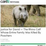 『サイの虐殺を助ける署名:サイの孤児デイビット』の画像