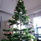 『クリスマスの飾りつけ』の画像