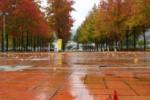 秋がちょっとづつ近づいてる町の平野部~インサイト交野No.107~
