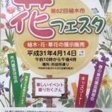 『次の日曜日・4月14日は戸田市花フェスタ(第62回植木市) 開催。10時から16時まで。戸田市役所正門付近と西側の市役所通りを歩行者天国にして開催されます。』の画像
