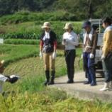『稲刈りの応援に来ていただいた皆様に感謝』の画像