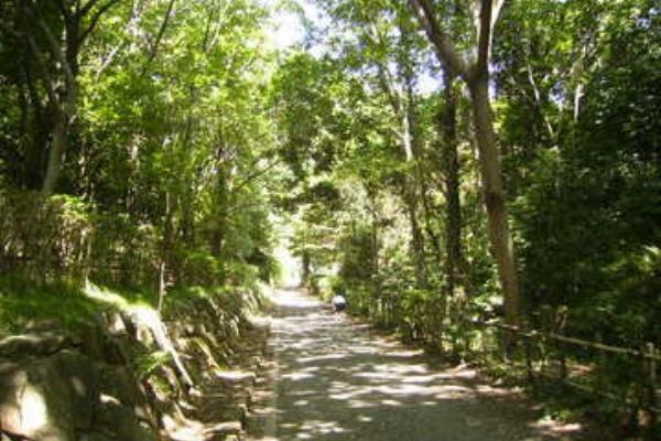 座間 谷戸 山 公園