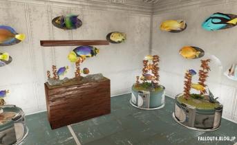 More Colorful Fishy Stuff