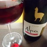 『アルパカの赤ワイン~サンタ・ヘレナ・アルパカ・ピノ・ノワールとミネストローネスープ』の画像