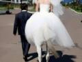 【朗報】女性ケンタウロス、人間の男性と結婚する【画像あり】