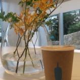 『【六本木・乃木坂】ブルーボトルコーヒー六本木カフェに行ってきた!』の画像