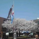 『鯉のぼりのまち・加須市』の画像