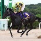 『【佐賀・吉野ヶ里記念結果】3歳牝馬ミスカゴシマが優勝、単勝1.1倍ドラゴンゲートは3着』の画像