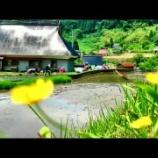 『ぜひご覧ください。富士酢の原料米はこんな場所で栽培しています』の画像