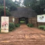 『【ザンビア】ゾウの孤児をひきとって育てるという命を守る仕事に触れた。』の画像