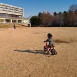 『広大な広場で運動不足解消!和光樹林公園へ再訪。』の画像