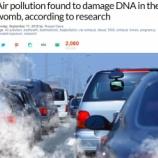 『大気汚染が胎児のDNAを損傷させる』の画像