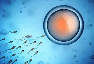 【人類終了】肩に塗るだけで精子が死滅する「塗るコンドーム」がついに爆誕!!!
