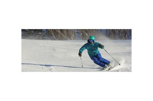 なんで皆スキーやめてしまったんや??????????のサムネイル画像