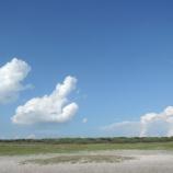 『夏の 跡』の画像