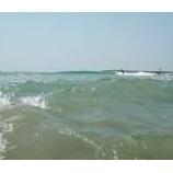 『水中動画!【伊良湖】でBB&シュノーケリング』の画像