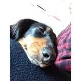 『寝顔』の画像