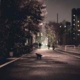 【画像】西成あいりん地区、もうめちゃくちゃ・・・。