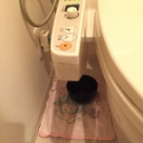 『京都府京田辺市 ウォシュレット水漏れ  -便座交換・TOTO-』の画像
