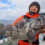 『2月28日 釣果 スーパーライトジギング SLJ Seaguarメンバーの釣行会』の画像