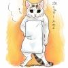 『バスタオル巻いて直立してる猫』のイラスト