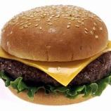『絶滅ラベル:なぜハンバーガーがオオカミを殺すのか』の画像
