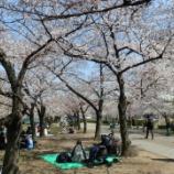 『春の企画活動 開催!』の画像