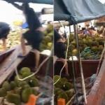 【動画】中国、転覆船から「ドリアン」大量流出!住民が略奪し、食べて集団食中毒