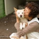 『犬を助けることに人生を捧げる女性』の画像