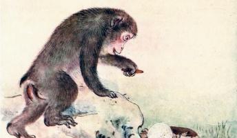 カニ「柿欲しさに母さんを殺した猿を倒したけど、物語はまだ終わっていなかった」