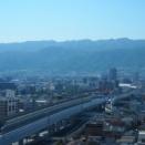阪神「今日はいい天気ですね!」