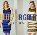 「白&金」「青&黒」の大論争になったドレスメーカーが本当に「白&金」を制作 実はステマだった?