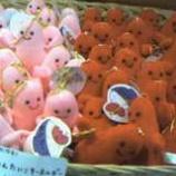 『戸田に戻る熱がでる』の画像