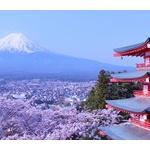 日本の文化や食って何一つオリジナルがないよな
