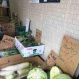 『【デリバリー】配達してくれる戸田市の八百屋さん、戸田市役所南通り・まるこう青果さんの「12月11日金曜日のお野菜・くだもの」情報。宅配受付はお電話で午前11時までの受付です。』の画像
