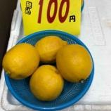 『お徳用レモン入荷!』の画像