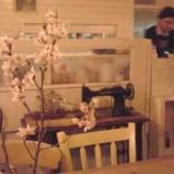 『カフェ・シバケン「お花見カフェ」』の画像