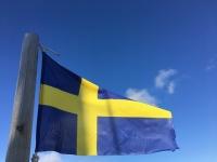 現金が消えたスウェーデンの現在の様子がこちら→