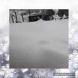『克雪』の画像