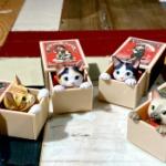 マッチ箱から猫が顔を出す!「船橋つとむ マッチボックス猫」がガチャフィギュアになった!