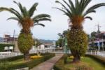 ロータリー前にはパイナップルみたいな双子の木があって、そこに書かれているモノは!~京阪電車郡津駅のところ~