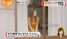 【乃木坂46】白石麻衣『めざましテレビ』で可愛さ爆発大暴れ!