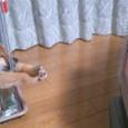 【画像】柴犬さん、ストーブで肉球を温めてしまうwww。 #ヒーター #暖房器具