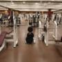 そのダンベルやバーベルは大丈夫? アメリカで公共ジムのトレーニング器具から薬剤耐性菌が大量に発見される