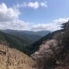 奈良・吉野山 奥千本まで行ってきた時の話 世界遺産『金峰神社』と『西行庵』