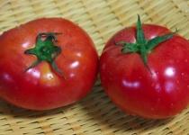 トマトジュースって名前で損してるよね
