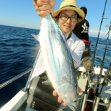 『8月14日 釣果 ジギング・キャスティング カツオ9匹!!』の画像
