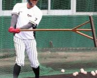 13年ぶり阪神・糸井が左翼へ ロハス不在想定し準備着々 矢野監督「右翼空けて待つことない」