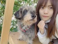 【日向坂46】愛犬がデカイのかメンバーが小さいのか・・・