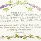 『第五章 心と言う病気、トマスや私たちの疑いを消す神。癒やしと心の旅路。』の画像